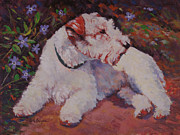 Bred Originals - Fergie Among The Violets by Keith Burgess