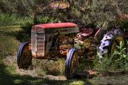 Ferguson Art - Ferguson Tractor by David Patterson