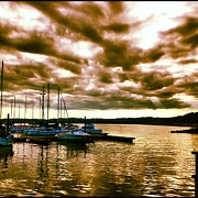 Boats In Harbor Originals - Fern Ridge Harbor by Bryan Normann