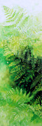 Large Canvas  For Sale Paintings - Ferns 1 by Hanne Lore Koehler