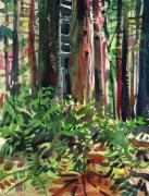 Ferns Paintings - Ferns and Redwoods by Donald Maier
