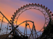 Roller Posters - Ferris Wheel Sunset Poster by Eena Bo