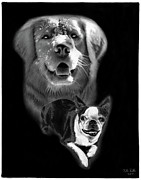 Charcoal Dog Drawing Drawings Posters - Festus and Rosie Poster by Peter Piatt