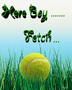 German Shepard Posters - Fetch Poster by Cheryl Young