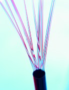 Communication Photos - Fibre Optics by Tek Image