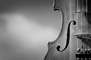 Music Photos - Fiddle by Colin Campbell