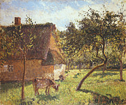 Cottages Framed Prints - Field at Varengeville Framed Print by Camille Pissarro