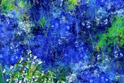 Flowers - Field of Blue by David Lane