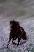 Equine Art Pastels Posters - Field of Dreams Poster by Kim McElroy