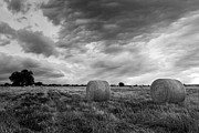 Black And White Photos Originals - Field of Hay Black and White 2 by Paul Huchton