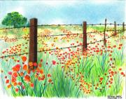Red Poppies Drawings - Field of Poppies by Sharon Blanchard