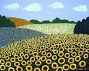 Floral Landscape Paintings - Field of Sunflowers by Frederic Kohli