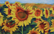Field Of Sunflowers Paintings - Fields of Gold by Billie Colson