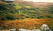 Ranchland Framed Prints - Fields of Ireland Framed Print by Douglas Barnett