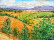 Mountains And Lake Posters - Fields of Summer Poster by Ethel Vrana