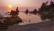 Oregon Coast Prints - Fiery Coastline Print by Mike Reid