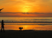 Special Moment Prints - Fiery Sunset Print by Margaret Pitcher