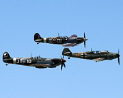 Spitfire Photos - Fighters - Battle of Britian Flight by Matthew Wilson