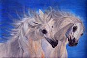 White Horse Photographs Greeting Cards Prints - Fighting Stallions Print by El Luwanaya Arabians