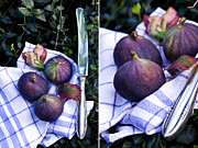 Figs Framed Prints - Figs Framed Print by Larissa Mahler