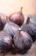 Figs Prints - Figs Print by Neil Overy
