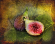 Figs Print by Sari Sauls