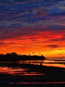 Brian Governale Metal Prints - Fiji Sunrise Metal Print by Brian Governale