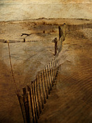 Beach Fence Prints - Finally Print by Trish Tritz