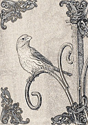 Finch Drawings Metal Prints - Finch sketch photoart Metal Print by Debbie Portwood