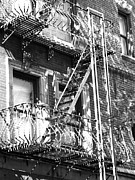 Nyc Fire Escapes Framed Prints - Find The Pidgeon Framed Print by Marvin Blatt