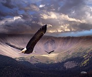 Eagles Digital Art - Finding Tranquility by Bill Stephens