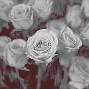 Roses Digital Art Metal Prints - Finding your place Metal Print by Amanda Barcon
