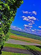 Wineries Photo Posters - Finger Lakes Country Poster by Elizabeth Hoskinson