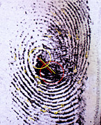 Forensic Art - Fingerprint Analysis by Mauro Fermariello
