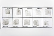 Paper Cut-outs Framed Prints - Fingerprint Record Card Framed Print by Victor De Schwanberg