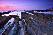 Half Moon Bay Metal Prints - Fingers to the Sea Metal Print by Matt Hanson