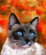Michelle Wrighton Posters - Fire and Ice - Siamese Cat Painting Poster by Michelle Wrighton