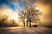 Laurel Ridge Posters - Fire and Ice - Winter Sunset Landscape Poster by Dave Allen
