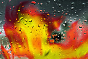 Raining Mixed Media Prints - Fire and Rain Abstract 2 - Inverted Print by Steve Ohlsen