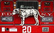 Dalmation Posters - Fire Dog Poster by Bryan Hochman