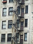 Fire Escape Print by Todd Sherlock