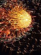 Fire Works Prints - Fire Flower Print by Karen Wiles