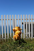 Yellow Line Prints - Fire Hydrant At The Point Reyes Lighthouse in California 7D16027 Print by Wingsdomain Art and Photography