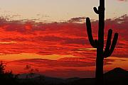 Southwest Landscape Metal Prints - Fire in the Sky Metal Print by James Bo Insogna