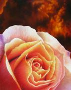 Rose Painting Posters - Fire Rose Poster by Jurek Zamoyski