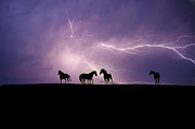 Wild Horses Photo Prints - Fire Storm Print by Lisa Dearing