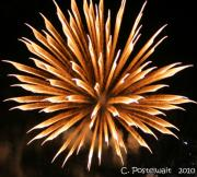 Carolyn Postelwait - Fire Works 5