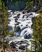 Scenic Photography Posters - Firehole River III Poster by Robert Bales