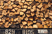Clear Cut Posters - Firewood Hauled From Clearcut On Truck Poster by Gerry Ellis