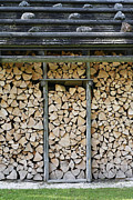 Shed Posters - Firewood stack Poster by Frank Tschakert